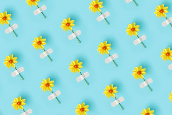 Flower pattern. Fresh natural yellow flower glued with adhesive plaster on a blue backgrou