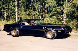 1981 Firebird