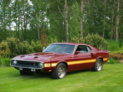 1970 Shelby GT 500