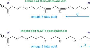 Omega-6 (above) and Omega-3 (below) fatty acids