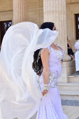 Belly dance for arabic wedding and event
