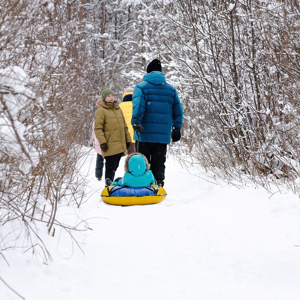 Winter Nature Walk, Family Activities, Winter Fun with Kids and Family