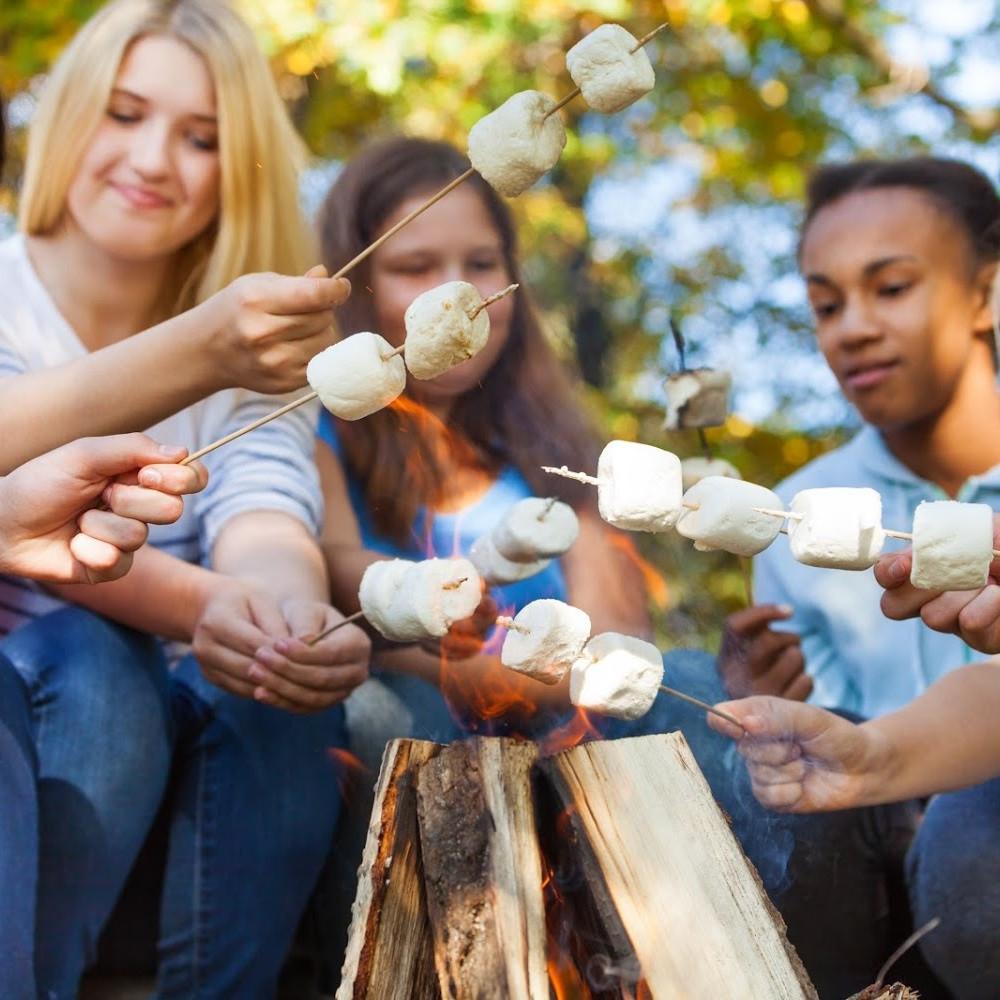 Bonfire Ideas / Smores Ideas / Smores Bar / Smores Bar Ideas / Fall Activities / Family Fun / Kids Activities / Marshmallow Sticks