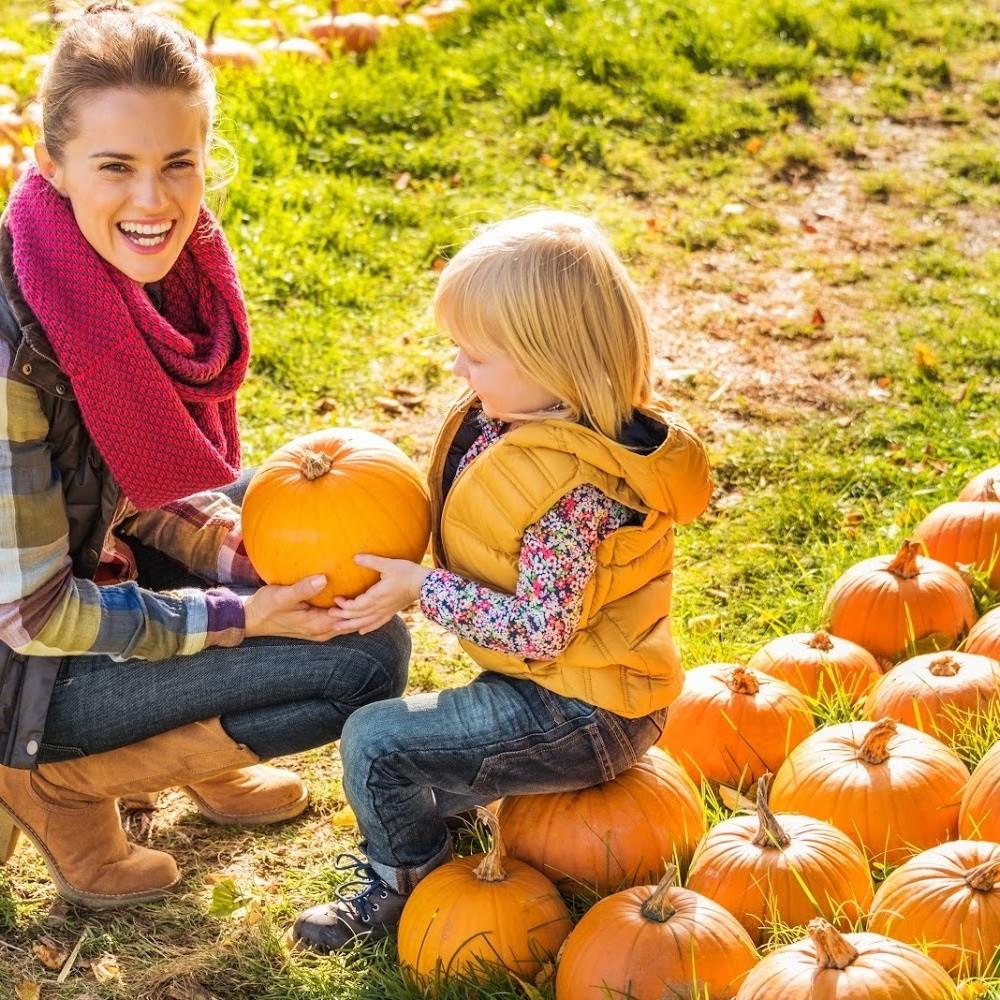 Fall Bucket List / Fall Ideas / Pumpkin Patch / Pumpkin Activities / Harvest Festival / Mom and Child in Pumpkin Patch / Fall Festival / Kids Activities / Fall Family Activities