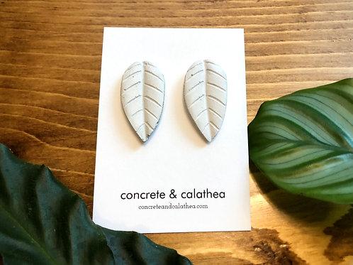 Concrete calathea leaves