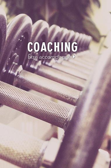 cat-coaching.png