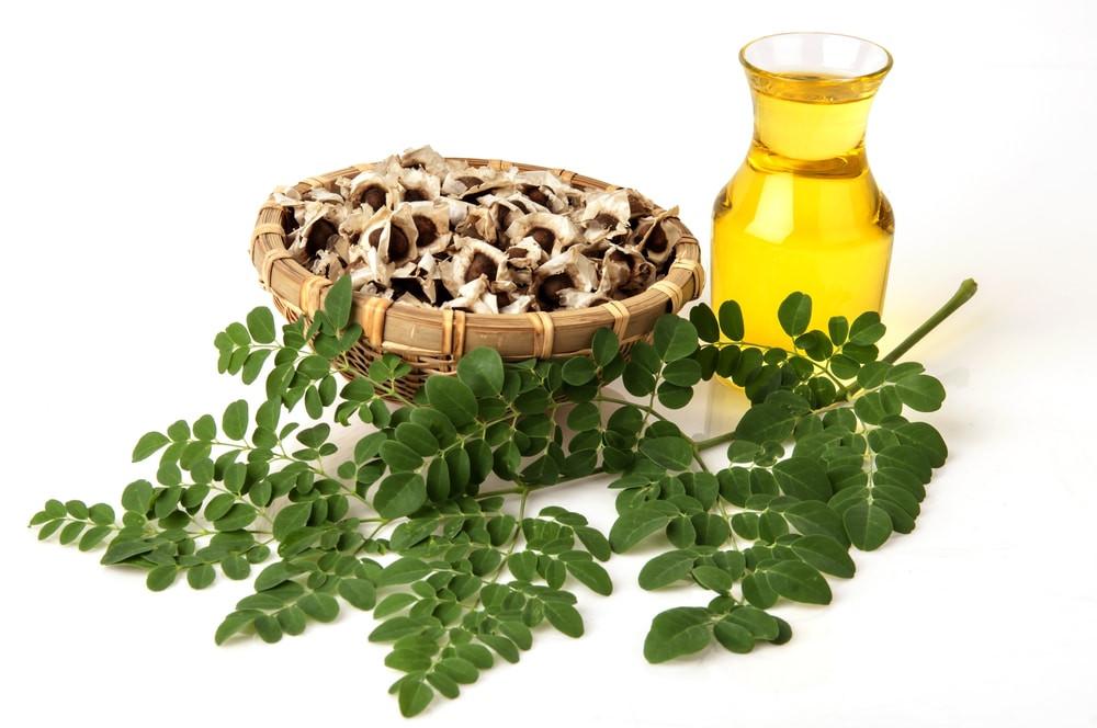 Moringa Oil Benefits