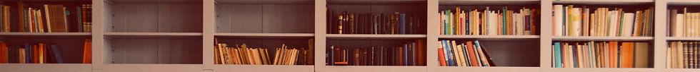 zwei Tablare eines langen Büchergestells mit Büchern unterschiedlichen Alters, Dicke und Farbe