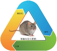 蟲害三要素.jpg
