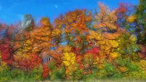 automne 3.jpg