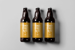 Homer Street Ales - Lager