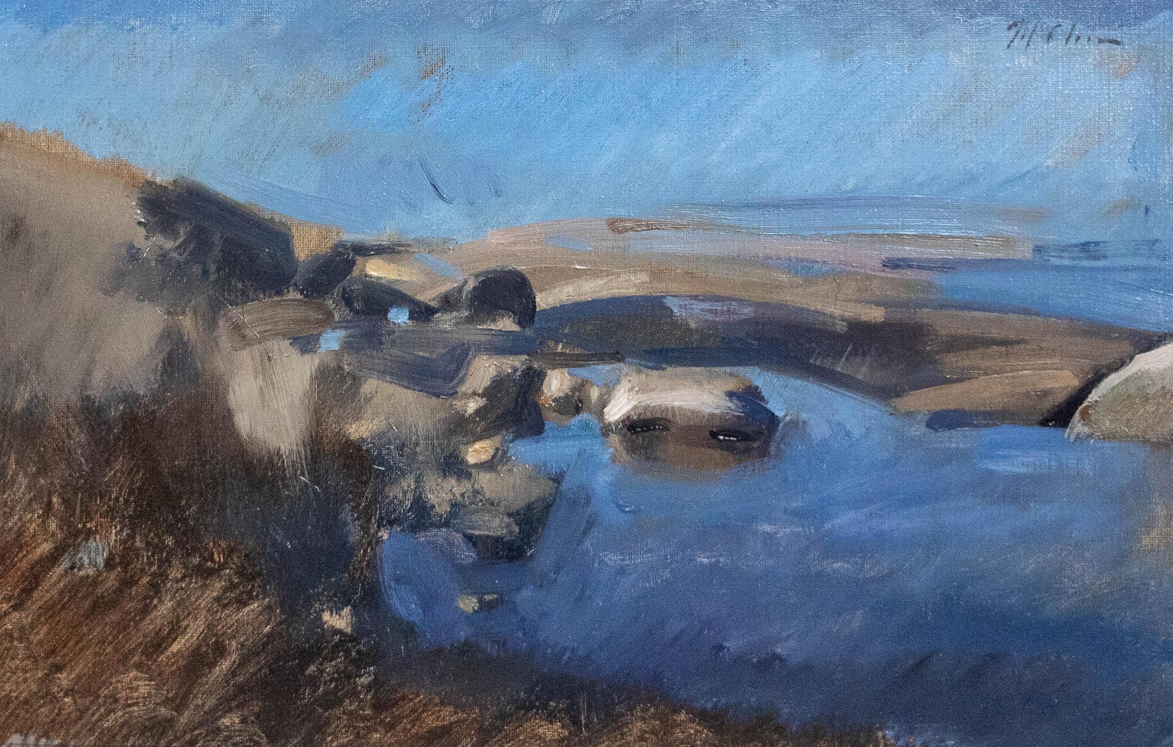 Coastal Sketch 32x50