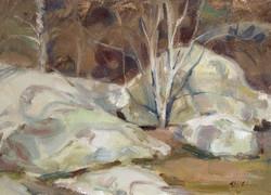Lichen Rocks 26x36