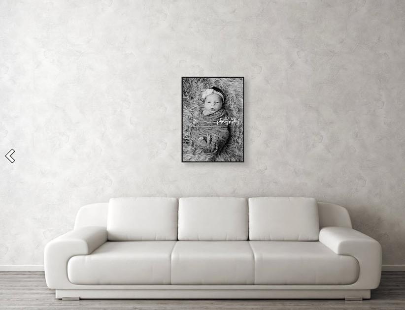 BW fur Framed Canvas
