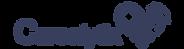 Carealytix_logo_Blue.png