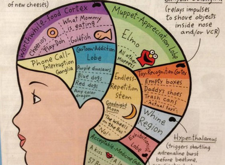 10 Minutes in the mind of a toddler