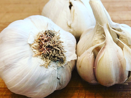 Witchy Wednesday - Garlic