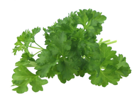 Witchy Wednesday - Parsley
