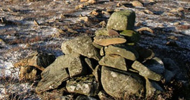 A_small_cairn_on_Foulshiels_Hill_-_geogr