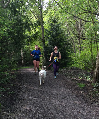 runners-white-dog-trail.jpg