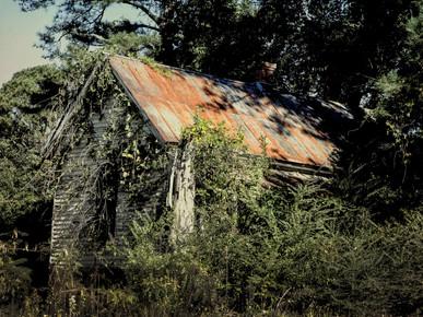 Forlorn House