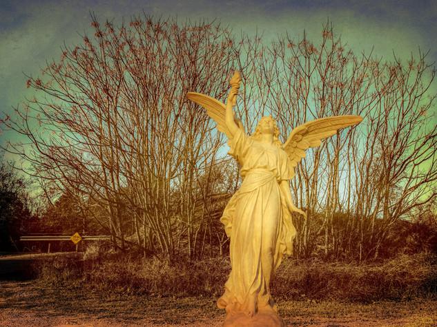 Dead End Angel