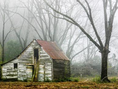 White Barn in the Fog