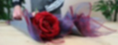 Valentine Collection (2).png