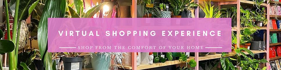 Virtual Shopping.png