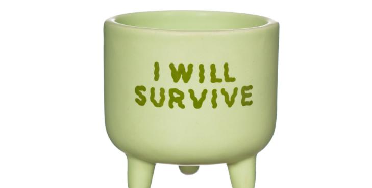 I Will Survive Mini Planter