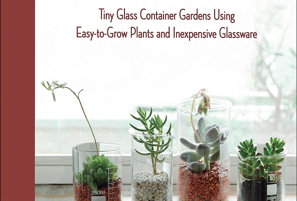 Miniature Terrariums Tiny Glass Container Gardens Using Easy-to-Grow Plants and