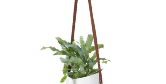 White Hanging Pot Leather Strap