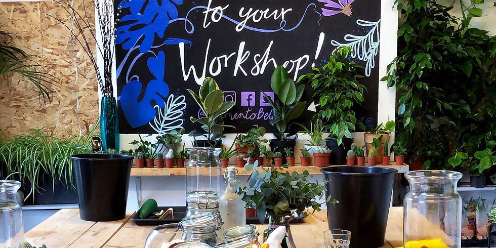 Plant Addict Workshop