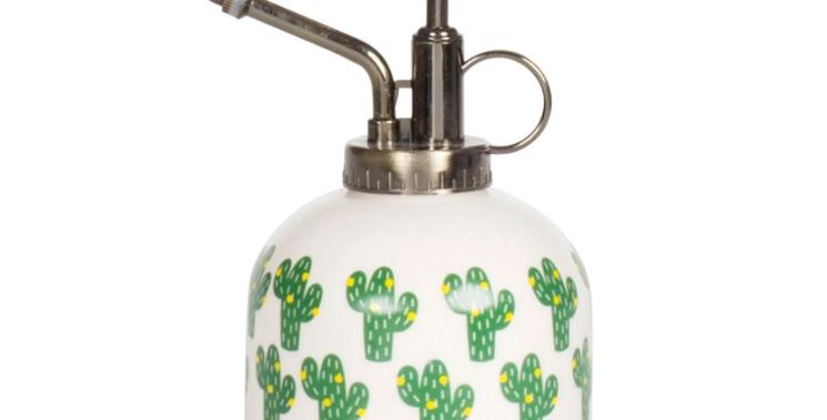 Cactus Plant Mister