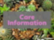 Plant Care (2).png