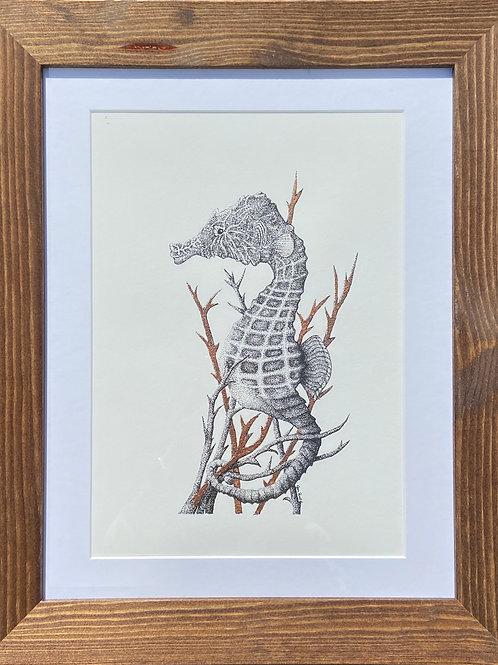 Hippocampus Hippocampus SE Print