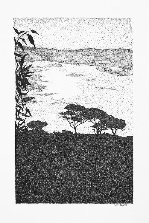 Morning Light print