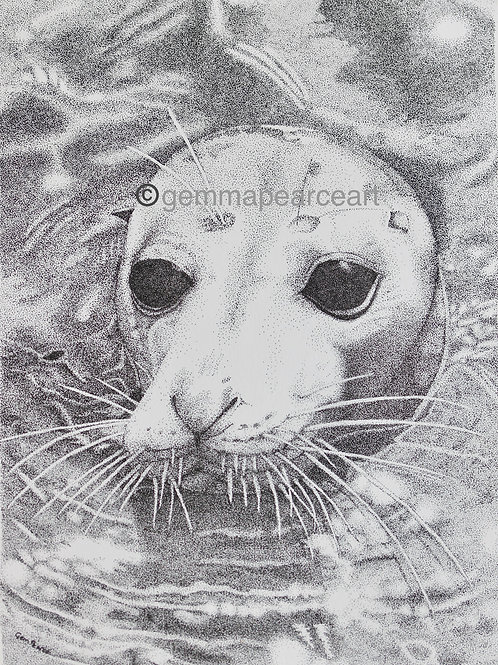 Whiskers print