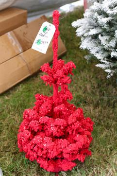 Red Little Tree.jpg