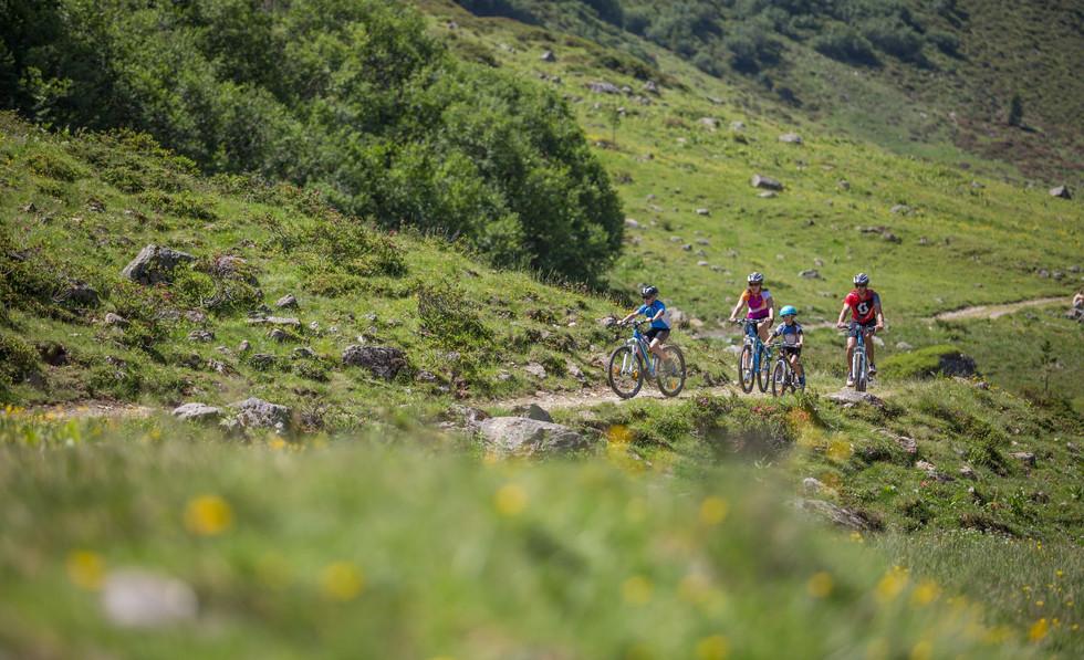 mountainbike_sfl.jpg