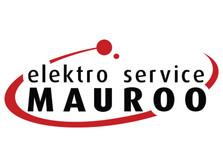 electromauro.jpg