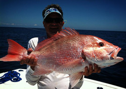 Sarasota Red Snapper charters