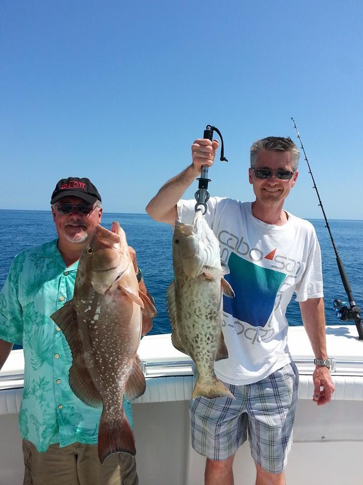 Siesta Key grouper trips