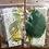 Thumbnail: Tea and Blooms Embellishment Kit