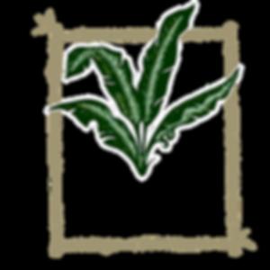 uki uki logo