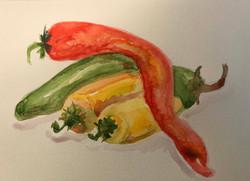 peppers water color.jpg