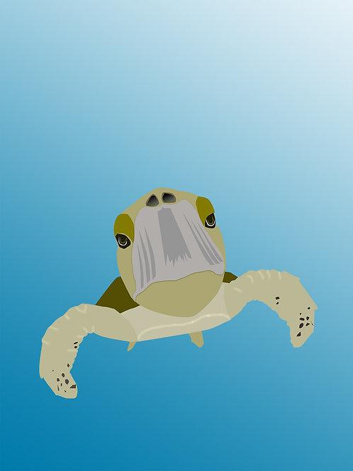 Sea Turtle (Set of 4)