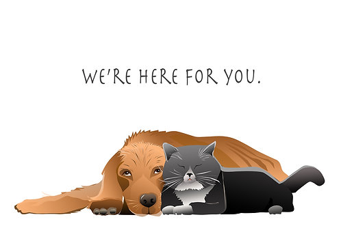 We're here for you. (Set of 4)