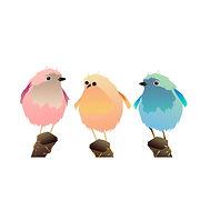 multicolored bird trioLR for Wix.jpg