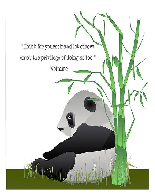 Pondering Panda (Set of 4)
